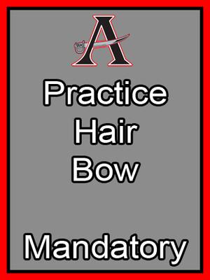 Practice Hair Bow Mandatory