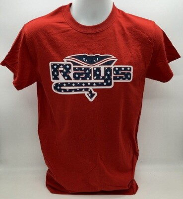 Independence Day Rays Tee