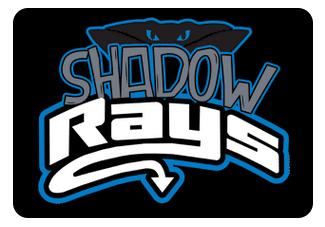 Shadow Team Hair Bows