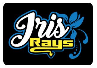 Iris Team Hair Bows