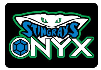 Onyx Team Hair Bows