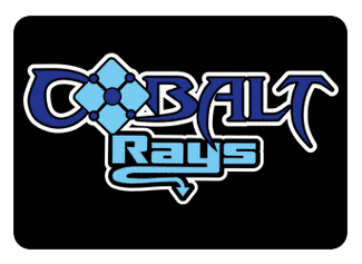 Cobalt Team Hair Bows