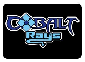 Cobalt Crew Neck Sweatshirt