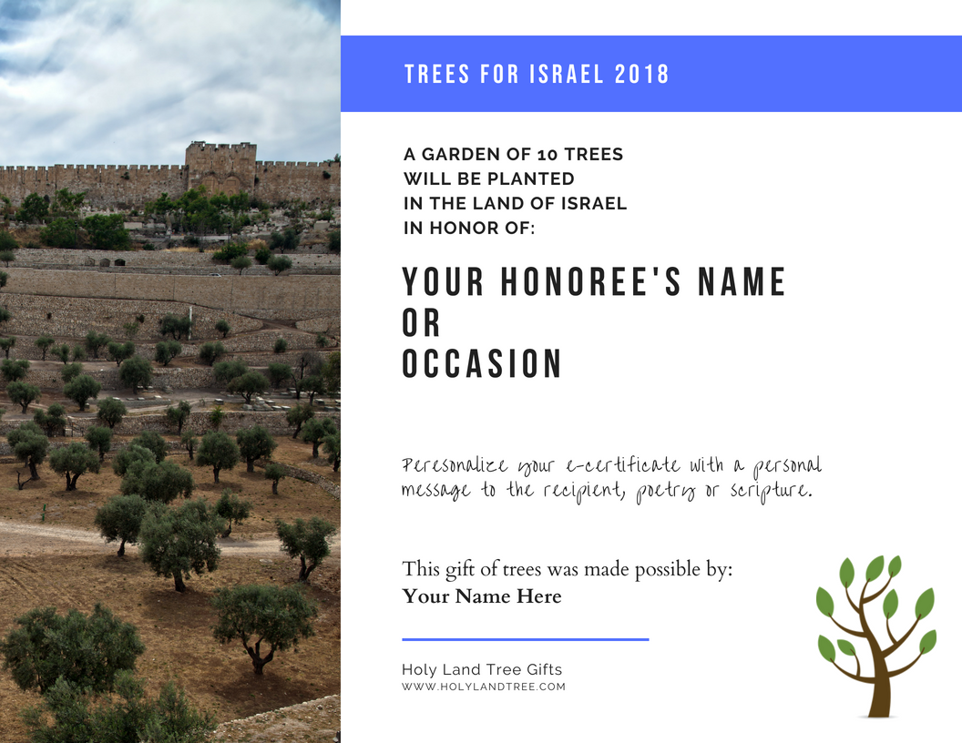 Plant a Tree in Israel with Custom E-Certificate