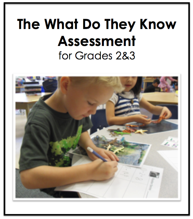 What Do They Know Assessment for 2&3