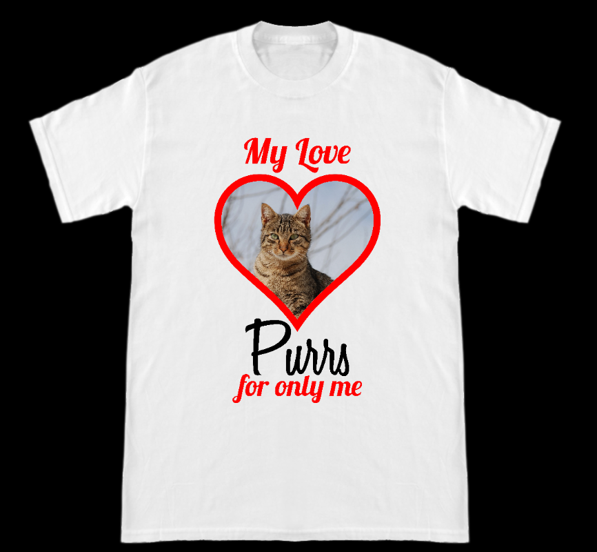 My Love Purrs