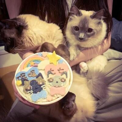 Cat Cake | 4