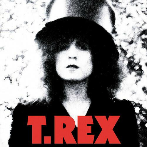 T Rex Slider