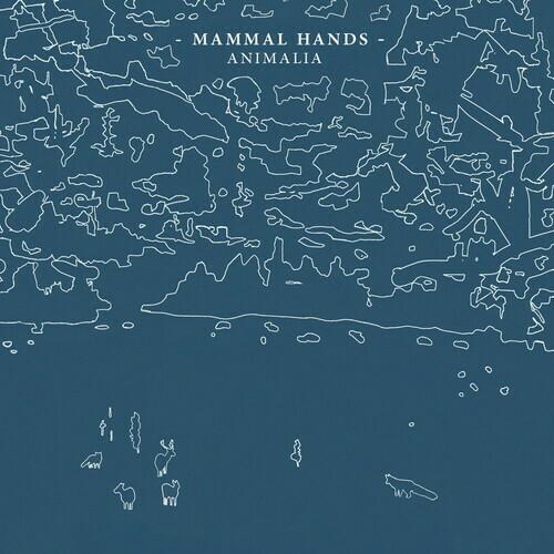 Mammal Hands / Animalia