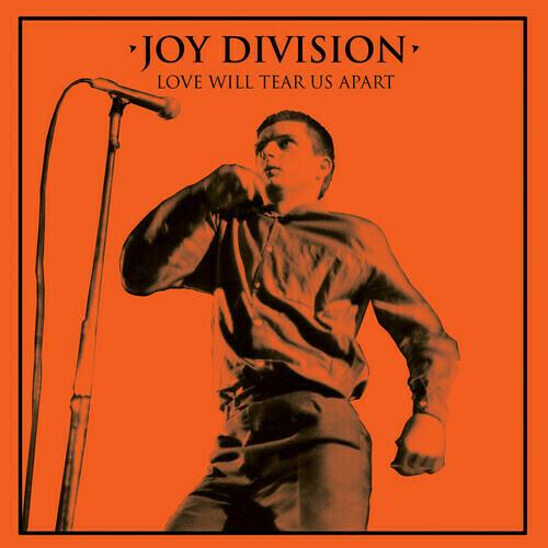 Joy Dividion / Love Will Tear Us Apart