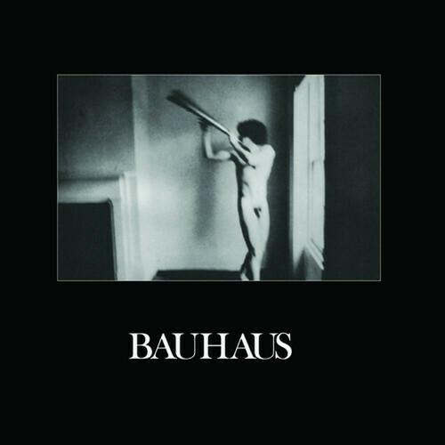 Bauhaus / In The Flat Field