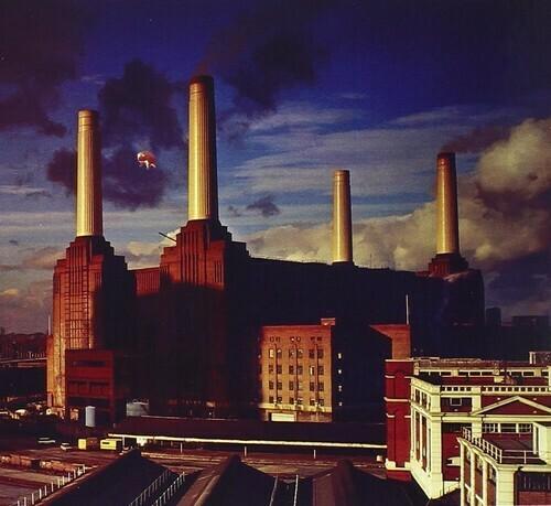 Pink Floyd / Animals (Import)