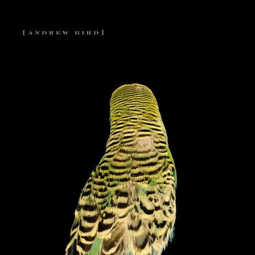 Andrew Bird / Armchair Apocrypha
