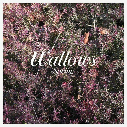 Wallows / Spring