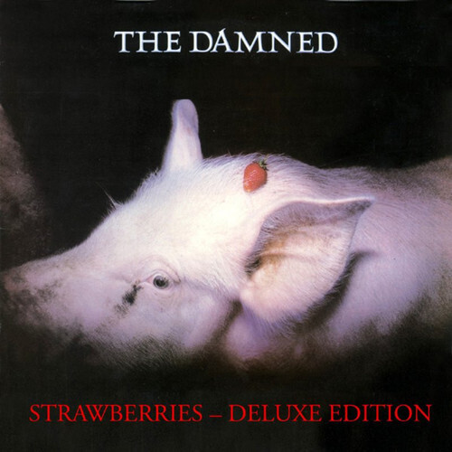 The Damned / Strawberries PRE ORDER