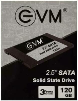 EVM EVM 25 120 GB Laptop, Desktop Internal Solid State Drive (EVM25/120GB)