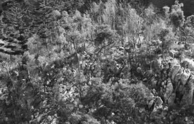 Rocky peak, Coane Ranges