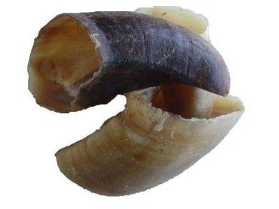 Dried Hooves