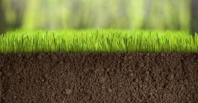 Спец. предложение: биогумус для газонов со скидкой 36%, 1 кг