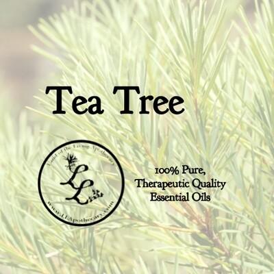 Tea Tree (All) melaleuca alternifolia