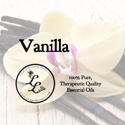 Vanilla (vanilla planifolia)