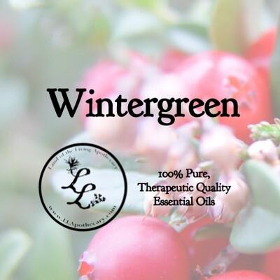 Wintergreen (gaultheria procumbens)