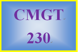 CMGT 230 Week 5 Learning Team Final Team Paper