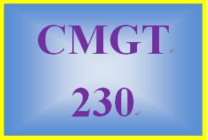 CMGT 230 Week 5 Learning Team Final Team Presentation