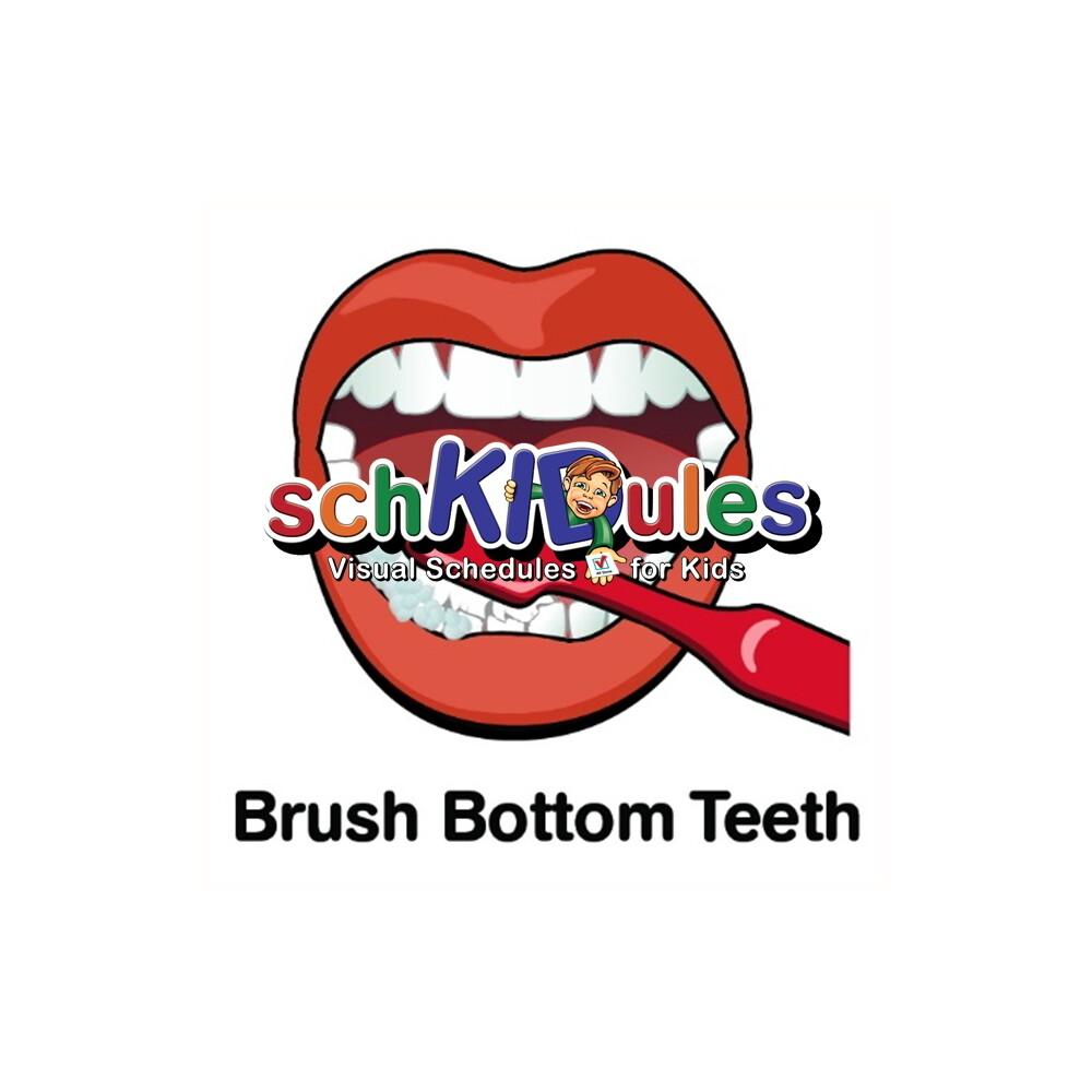 Brush Bottom Teeth