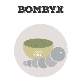 Ricarica bachi e mangime Bombyx