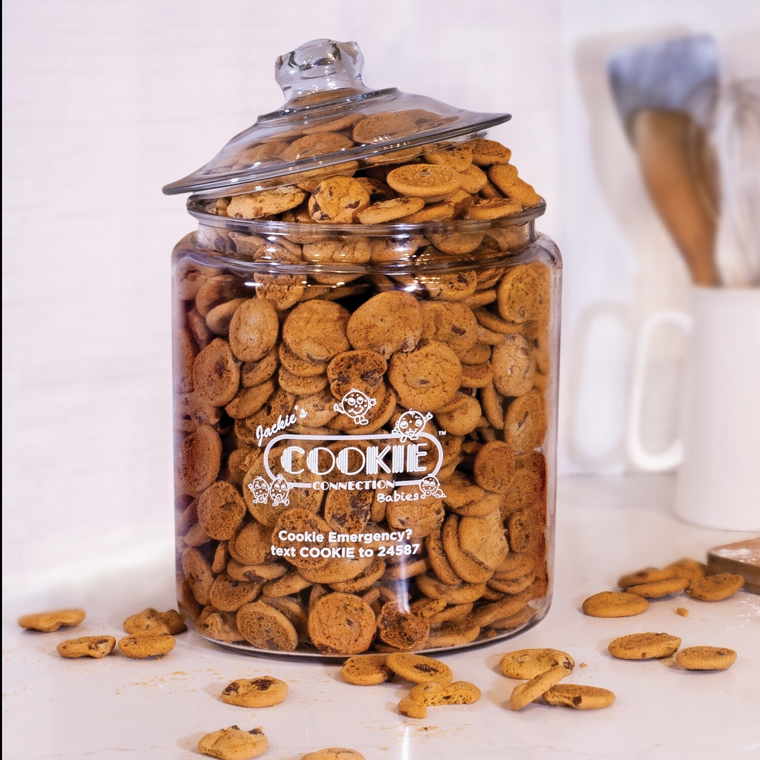 Magic Cookie Jar™ - Classic Chocolate Chip (available for pre-order)