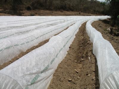 Agribón 1.80 x 1000m