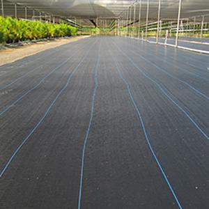 Ground Cover .9m x 91m (3'x300')
