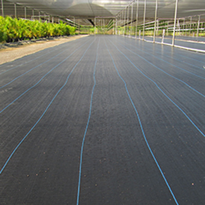 Ground Cover 3.66mX91m(12'x300')