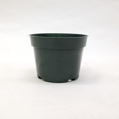 """Maceta Azalea 4"""" Verde 1980/caja"""