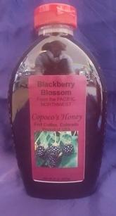 Blackberry Blossom Honey - Oregon - 32 oz Squeeze