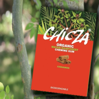 Chicza Organic Rainforest Chewing Gum - Cinnamon