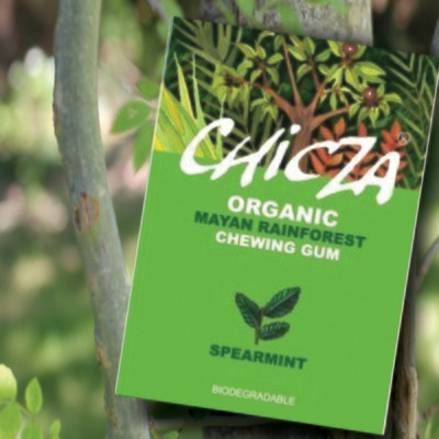Chicza Organic Rainforest Chewing Gum - Spearmint
