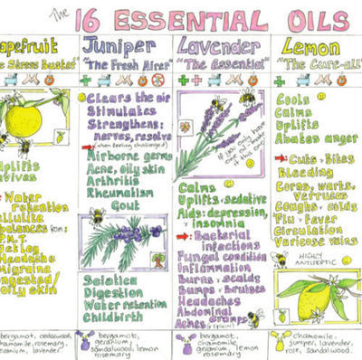 Essential oils guide Aromatherapist Wall Chart