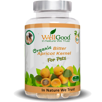 Organic Bitter Apricot Kernels Seed capsules for pets