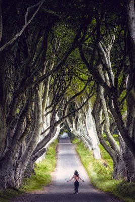 BELFAST - GAME OF THRONES TOUR, WESTEROS LOCATIONS - $99.00