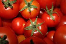 Thomas Tomato
