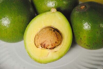 Peterson Avocado