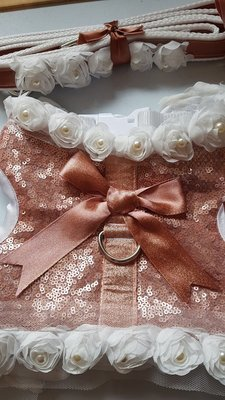 Sequin Wrap Harness