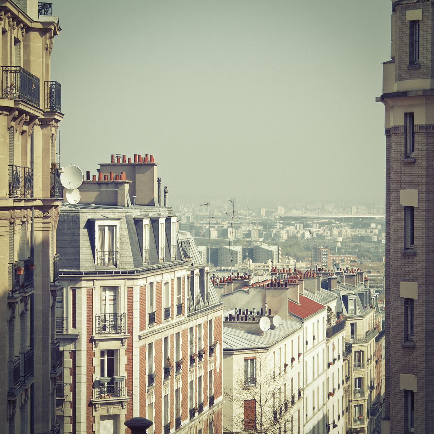 "Slim Aarons ""Paris Rooftops"" Wall Art   Jonathan Adler"