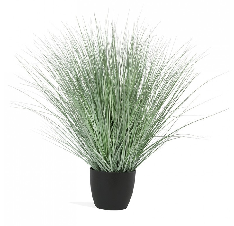 Potted Grass in Matte Black Planter
