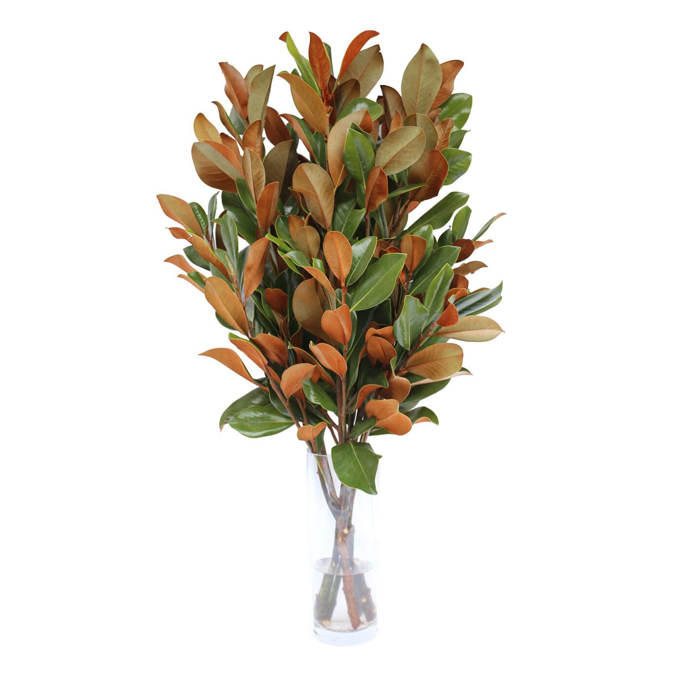 """Magnolia 36"""" Bouquet"""