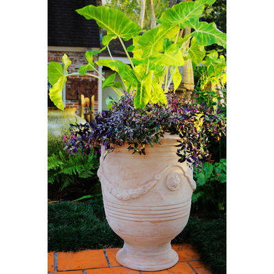 French Planter