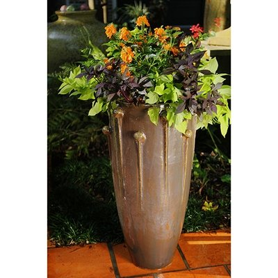 Kroton Planter (Set of 2)