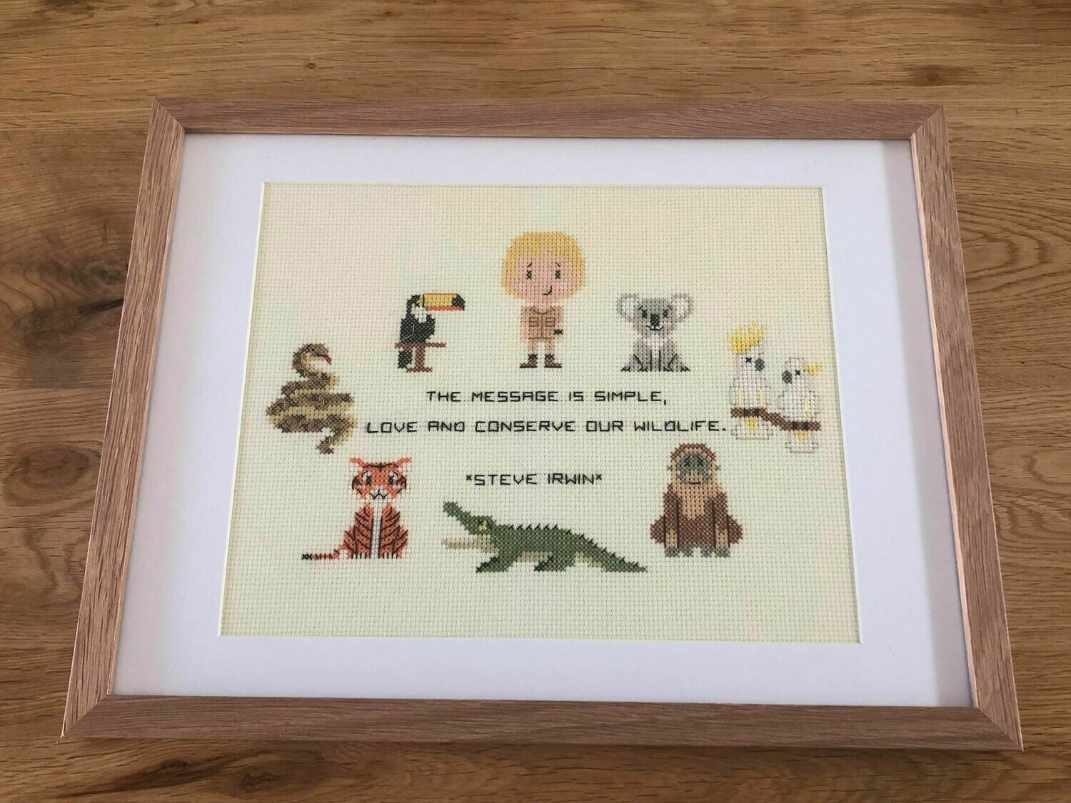 Steve Irwin Cross Stitch - donated by FMOD